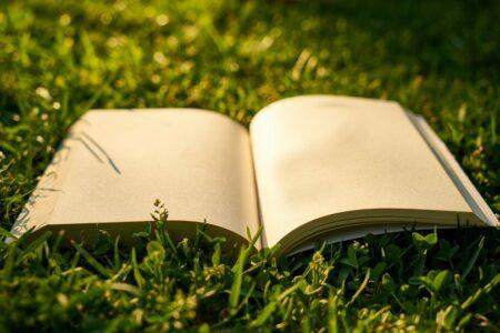 Литературное поле