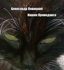 Кошки Провиданса
