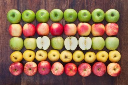 О любви к яблокам и других особенностях жизни наркоторговцев