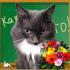 user_168_avatar